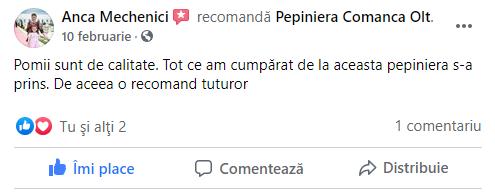review-7-pepiniera-comanca.png